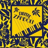 Various (Compiled by Julie Achard & Nico Skliris)      - Digital Zandoli