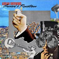 Adrian Sherwood - Survival & Resistance