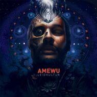 Amewu - Leidkultur