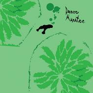 Animal Collective (Avey Tare, Panda Bear & Geologist) - Danse Manatee
