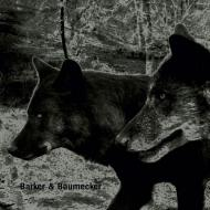Barker & Baumecker - Transsektoral
