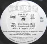 Big Punisher - 100%