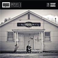Briggs - Sheplife