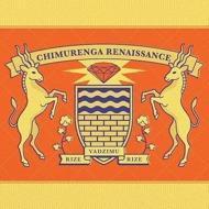 Chimurenga Renaissance - Rize Vadzimu Rize