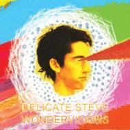 Delicate Steve - Wondervisions
