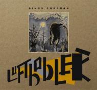 Dinos Chapman  - Luftbobler