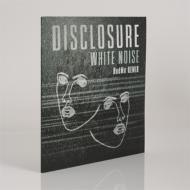 Disclosure - White Noise (HudMo Remix)