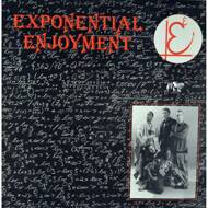 Exponential Enjoyment - Style Introduction