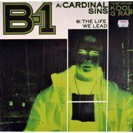 B-1 - Cardinal Sins