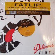 FatLip (from the Pharcyde) - What's Up Fatlip? / Goldmine