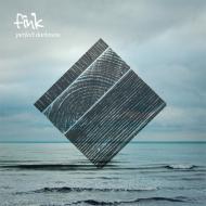 Fink - Perfect Darkness