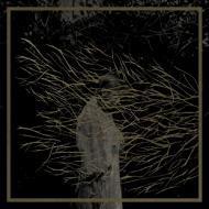 Forest Swords - Engravings