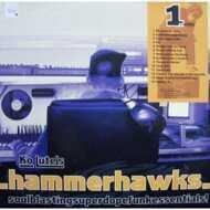 Ko Lute - Ko Lute's Hammerhawks 1st Strike
