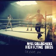 Noel Gallagher's High Flying Birds - Dream On