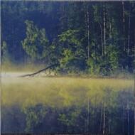 Oneirogen (Mario Diaz de León) - Plenitude (Olive Green Coloured Vinyl)