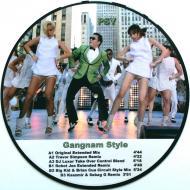 Psy - Gangnam Style (Ibiza Club 88)