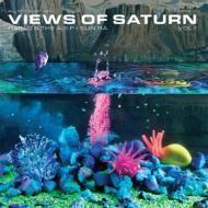 Ras G & The A.S.P. / Sun Ra - Views Of Saturn Vol.1