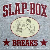 Roc Raida - Slap-Box Breaks
