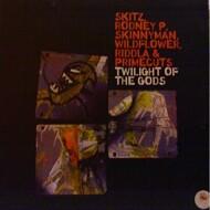 Skitz - Twilight Of The Gods