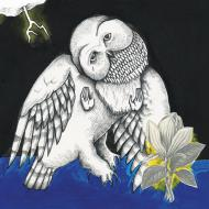 Songs: Ohia - The Magnolia Electric Co