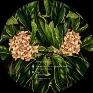Tomppabeats - Summer Lover EP