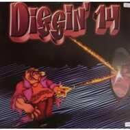 Various - Diggin Volume 14