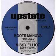 Various - Upstate Remixes 5